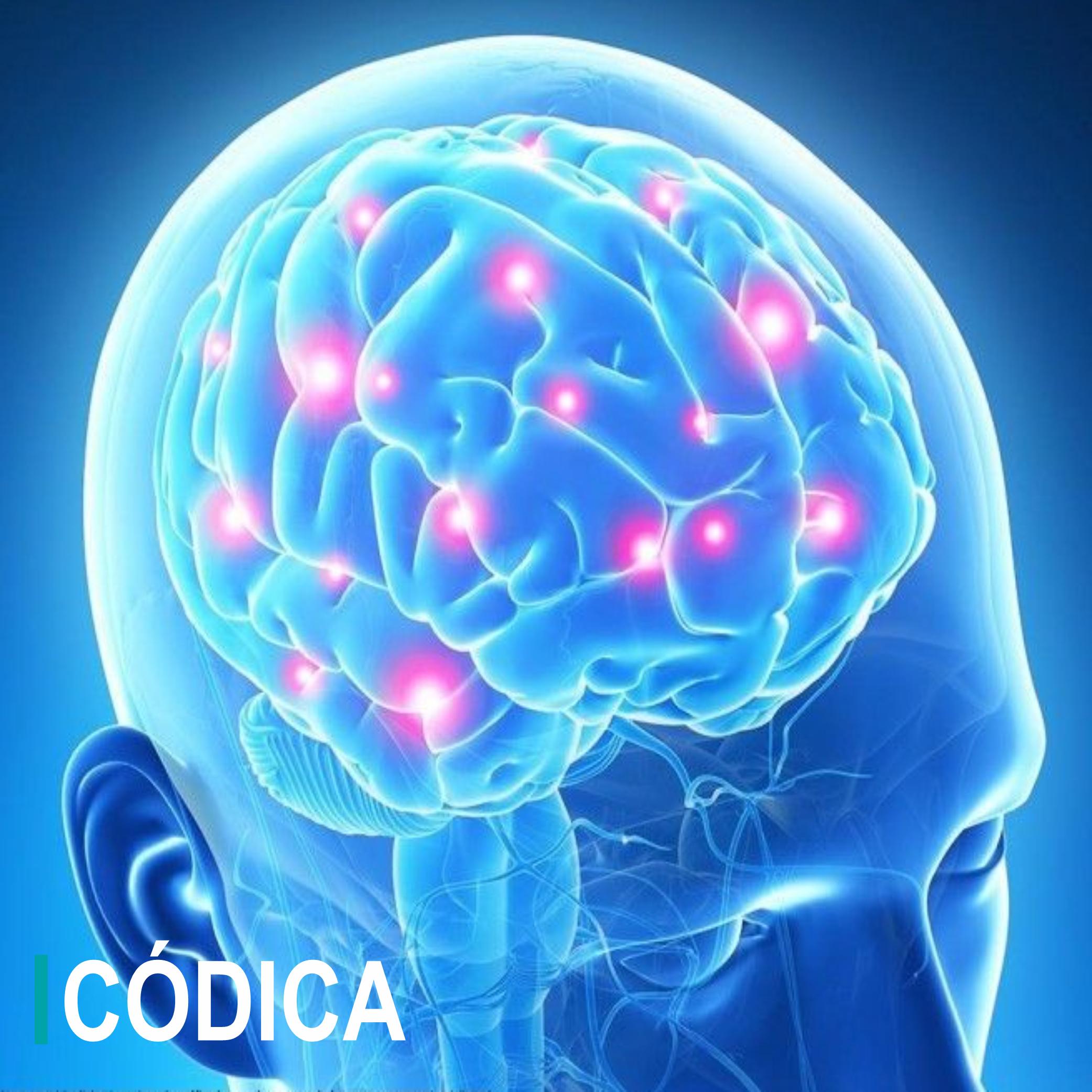 Códica